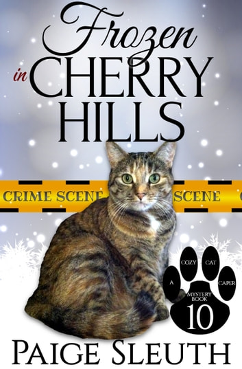 Frozen in Cherry Hills ebook by Paige Sleuth