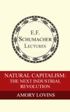 ebook Natural Capitalism: The Next Industrial Revolution de Amory Lovins, Hildegarde Hannum