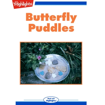 Butterfly Puddles audiobook by Cindy Blobaum