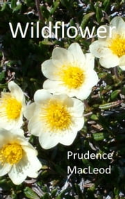Wildflower ebook by Prudence MacLeod