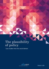 The Plausibility of Policy - case studies from the social domain ebook by Vasco Lub