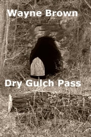 Dry Gulch Pass ebook by Wayne Brown