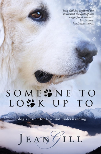 Someone To Look Up To ebook by Jean Gill