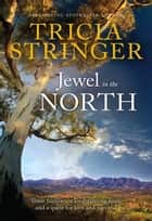 Jewel In The North ebook by Tricia Stringer