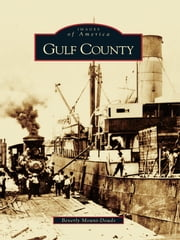 Gulf County ebook by Beverly Mount-Douds