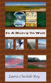 In A Hurry To Wait ebook by Laura Chechak-Roy