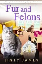 Fur and Felons - A Norwegian Forest Cat Cafe Cozy Mystery, #10 ebook by