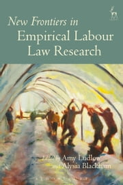 New Frontiers in Empirical Labour Law Research, ebook by Amy Ludlow,Alysia Blackham