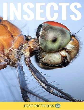 Insects ebook by Just Pictures