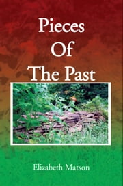Pieces Of The Past ebook by Elizabeth Matson