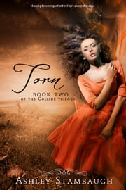 Torn ebook by Ashley Stambaugh