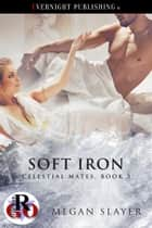 Soft Iron ebook by