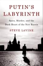 Putin's Labyrinth ebook by Steve Levine
