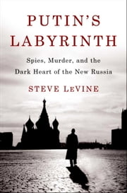 Putin's Labyrinth - Spies, Murder, and the Dark Heart of the New Russia ebook by Steve Levine