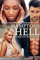 Hamptons Hell - A Sexy Billionaire Interracial BWWM Romance Short Story from Steam Books ebook by Marcus Williams, Steam Books