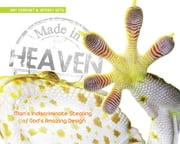 Made in Heaven - Man's Indiscriminate Stealing of God's Amazing Design ebook by Ray Comfort,Jeffrey Seto