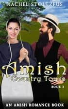 Amish Country Tours 3 ebook by Rachel Stoltzfus
