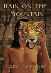 Rain on the Mountain ebook by Elaine Corvidae