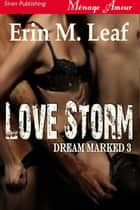 Love Storm ebook by Erin M. Leaf