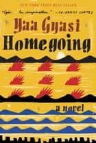Ebook Homegoing di Yaa Gyasi