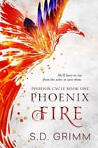 Phoenix Fire ebook by S.D. Grimm
