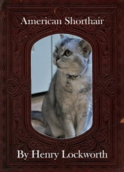 American Shorthair ebook by Henry Lockworth,Lucy Mcgreggor,John Hawk