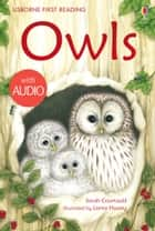 Owls: Usborne First Reading: Level Four ebook by Sarah Courtauld, Lorna Hussey
