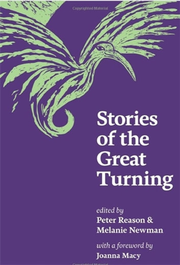 Stories of the Great Turning ebook by