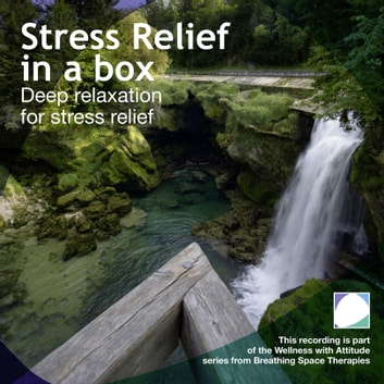 Stress relief in a box audiobook by Annie Lawler