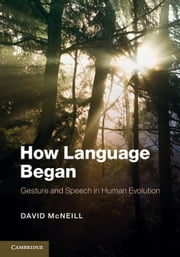 How Language Began ebook by McNeill, David