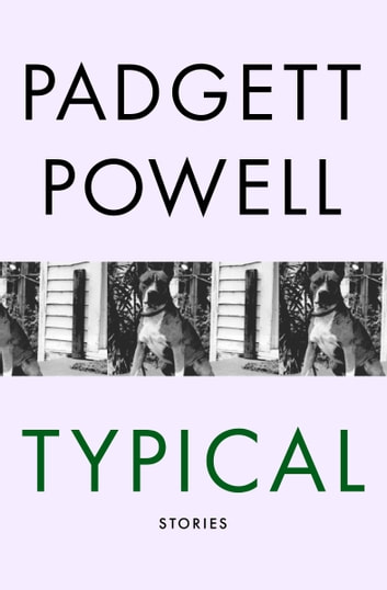Typical - Stories ebook by Padgett Powell
