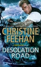 Desolation Road ekitaplar by Christine Feehan