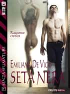 Seta nera ebook by Emiliana De Vico