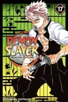 Demon Slayer: Kimetsu no Yaiba, Vol. 17 - Successors ebook by Koyoharu Gotouge