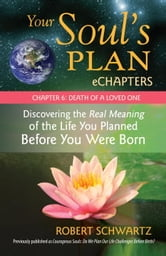 Your Soul's Plan eChapters - Chapter 6: Death of a Loved One - Discovering the Real Meaning of the Life You Planned Before You Were Born ebook by Robert Schwartz