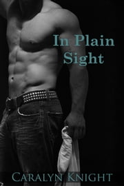 In Plain Sight ebook by Caralyn Knight