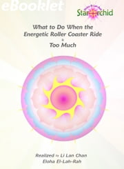 What to do when the Energetic Roller Coaster Ride is Too Much ebook by Li Lan Chan