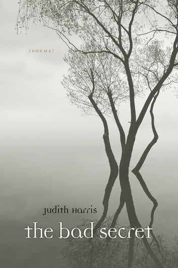 The Bad Secret - Poems ebook by Judith Harris