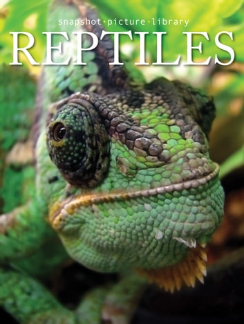 Reptiles ebook by Snapshot Picture Library
