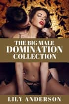 The Big Male Domination Collection ebook by Lily Anderson