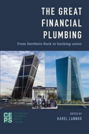 The Great Financial Plumbing - From Northern Rock to Banking Union ebook by Karel Lannoo