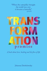 The Transformation Promise - A Book About Love, Healing and the Flow of Life ebook by Johanna Derbolowsky