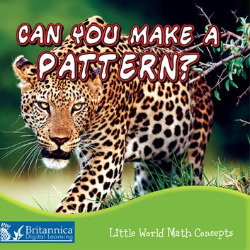 Can You Make a Pattern? ebook by Lin Picou