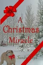 A Christmas Miracle - Christmas Miracle Series, #1 ebook by Sandy Loyd