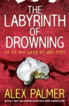 The Labyrinth of Drowning ebook by Alex Palmer