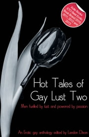 Hot Tales of Gay Lust Two - Gay erotic fiction ebook by Landon Dixon