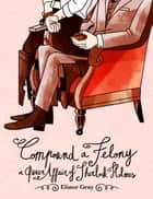 Compound a Felony - A Queer Affair of Sherlock Holmes eBook by Elinor Gray