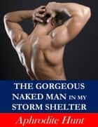The Gorgeous Naked Man in my Storm Shelter (Erotic Suspense) ebook by Aphrodite Hunt