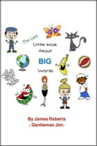 The Last Little Book About Big Words ebook by