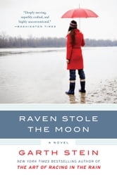 Raven Stole the Moon - A Novel ebook by Garth Stein